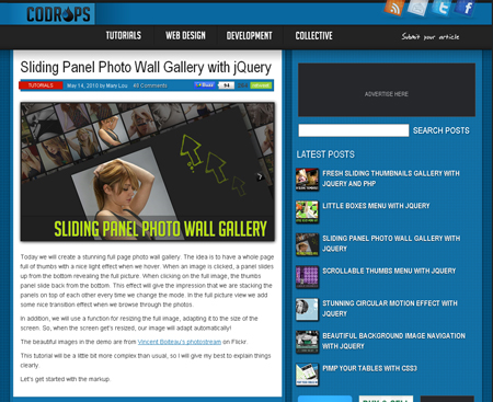 SlidingPanel PhotoWall GallerywithjQueryCodrops.jpg